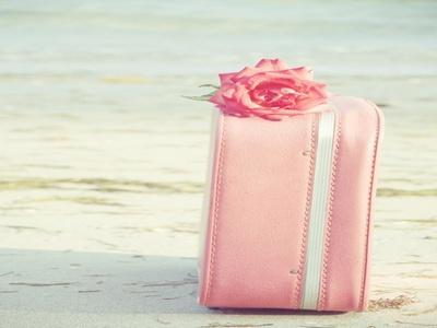 Приключения розового чемоданчика